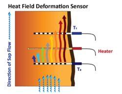 Heat Field Deformation Sensor
